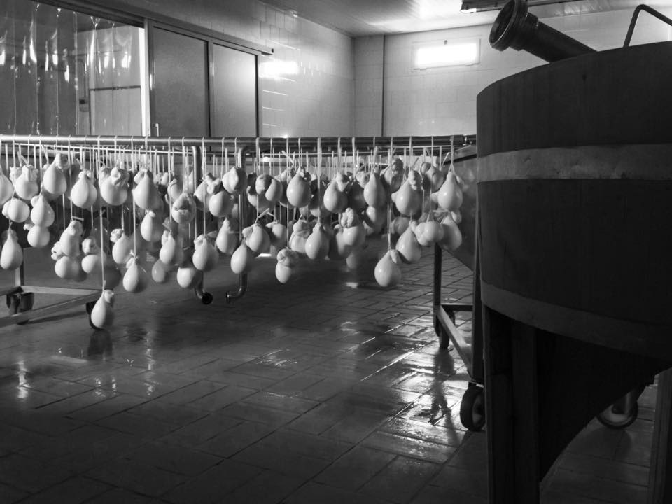 Asciugatura Caciocavallo